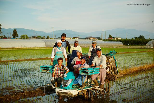 「田植えした水田と農家の人達」(c)hi-bi/amanaimages