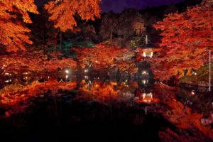 紅葉と遺産を巡る!秋に訪れたい日本の世界遺産5選