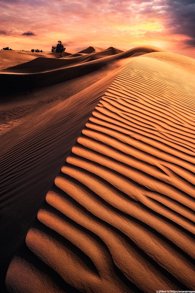 エジプト サハラ砂漠