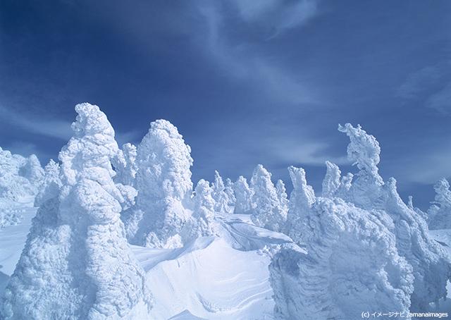 オーロラだけじゃない!冬に見られる美しい自然現象