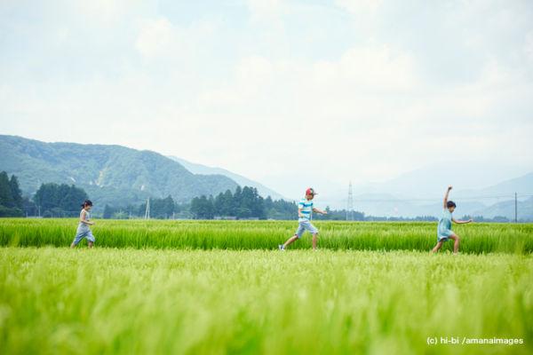 緑の田園で走る子供達